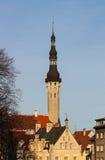 Oud Tallinn Royalty-vrije Stock Fotografie