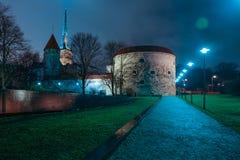 Oud Tallinn bij nacht stock foto's