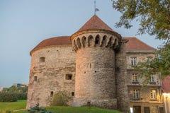 Oud Tallinn cityscappe, de historische bouw van 'Dicke Margarete' royalty-vrije stock foto's