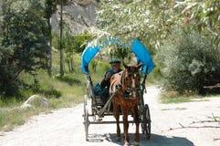 Oud Turks landbouwer het drijven paard & met fouten stock afbeelding
