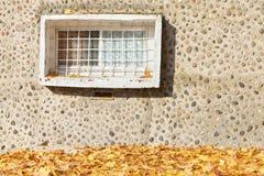 Oud venster op concrete steenachtige muur met herfstbladeren Stock Fotografie