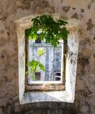 Oud venster op de vesting Royalty-vrije Stock Foto