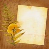 Oud verpletterd blad van een notitieboekje met een boeket Stock Foto