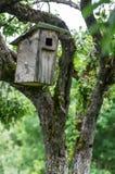 Oud vogelhuis Royalty-vrije Stock Fotografie