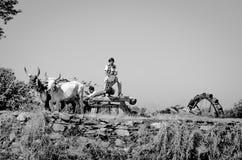 Oud waterrad in Gujarat, India Royalty-vrije Stock Afbeeldingen