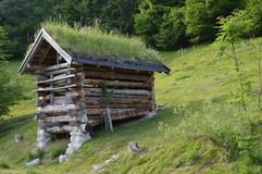 Oud weinig houten schuur bij de Oostenrijkse alpen stock foto's