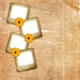 Oude achtergrond met fotodia en bloem Stock Fotografie