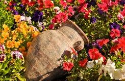 Oude amfora tussen bloemen Royalty-vrije Stock Fotografie