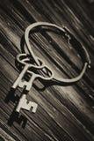Oude antieke sleutels en ring tegen oude bard muur Stock Afbeeldingen