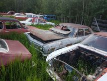 oude auto's en vrachtwagens stock foto