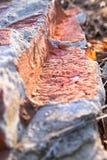Oude baksteen Royalty-vrije Stock Afbeeldingen