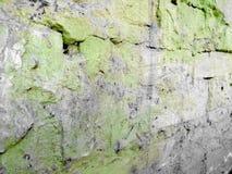 Oude bakstenen in groene verf met spleten met grijze vlekken stock foto