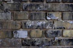 Oude Bakstenen muur Achtergrond voor uw ontwerp Stock Afbeelding