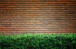 Oude bakstenen muur met groene grasachtergrond Royalty-vrije Stock Afbeeldingen