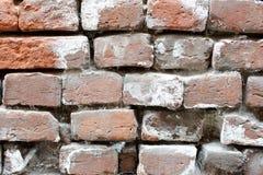 Oude bakstenen muur met spinneweb Stock Afbeeldingen