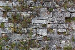 Oude bakstenen muur oud van tempel stock fotografie