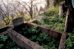 Oude Begraafplaats Royalty-vrije Stock Foto's
