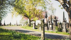 Oude begraafplaats in de lentetijd royalty-vrije stock foto