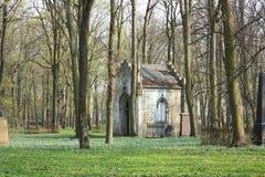 Oude begrafenis op verlaten kerkhof Stock Fotografie