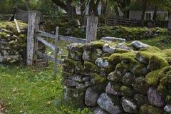 Oude bemoste stonewall en poort Stock Afbeelding