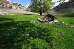 Oude bergcabine Royalty-vrije Stock Fotografie