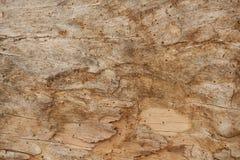 Oude beschadigde houten achtergrond Royalty-vrije Stock Foto