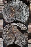 Oude betimmerd houten wal Stock Afbeeldingen