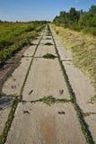 Oude betonweg Royalty-vrije Stock Foto's