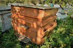 Oude bijenkorf Stock Afbeeldingen