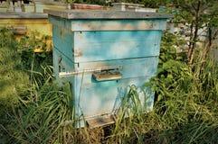 Oude bijenkorf Stock Afbeelding