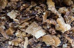Oude bijenwas royalty-vrije stock foto