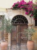 Oude blokhuisvoordeur met olijfbomen stock afbeeldingen
