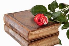 Oude boek en bloem op witte achtergrond royalty-vrije stock afbeelding