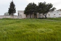 Oude boerderij Zuidelijk Italië Royalty-vrije Stock Afbeelding