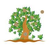 Oude boom, gras, de zomer stock illustratie