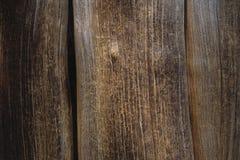 Oude boomschors Stock Afbeelding