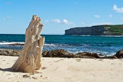 Oude boomstomp op strand Stock Afbeeldingen