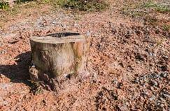 Oude Boomstompen die door ontbossing en brandwond worden veroorzaakt royalty-vrije stock fotografie