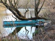 Oude boten in de wilde aard Stock Afbeeldingen