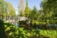 Oude brug in de herfst nevelig park Stock Foto's