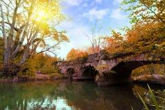 Oude brug in de Herfstbos bij zonsopgang Stock Afbeeldingen