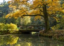 Oude brug in de herfstpark De herfst Royalty-vrije Stock Afbeeldingen