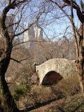 Oude brug, nieuwe gebouwen royalty-vrije stock foto