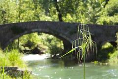 Oude brug op de rivier Moraca, Podgorica stock fotografie