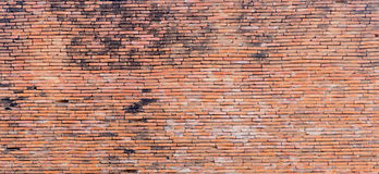 Oude bruine bakstenen muurtextuur Royalty-vrije Stock Afbeelding