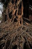 Oude Cambodjaanse tempel Royalty-vrije Stock Fotografie
