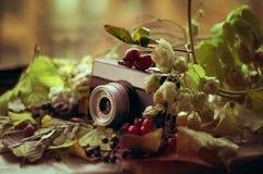 Oude camera in de herfst gebladerte en bessen Royalty-vrije Stock Fotografie