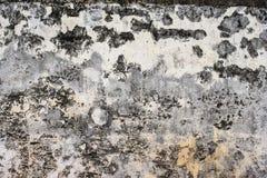 Oude concrete muur dichtbij museum Royalty-vrije Stock Foto's