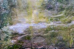 Oude concrete muur, verschillende kleuren stock afbeeldingen