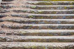 Oude concrete stappen Stock Fotografie